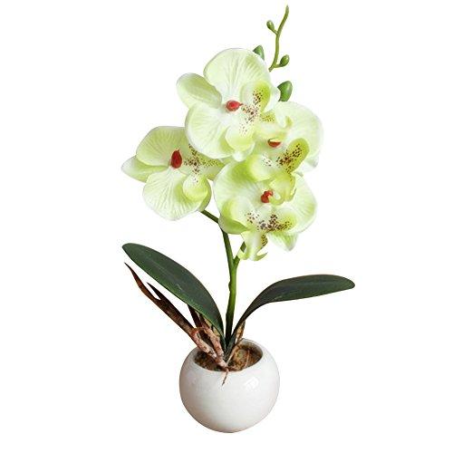 Beiguoxia Fleurs Artificielles Bonsaï 4 têtes Papillon Orchidée Viande Bonsaï Fleur Artificielle Décoration de Maison Jaune Vert
