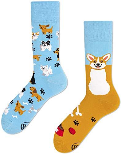 Many Mornings unisex Socken - Playful Dog (35-38 PL)