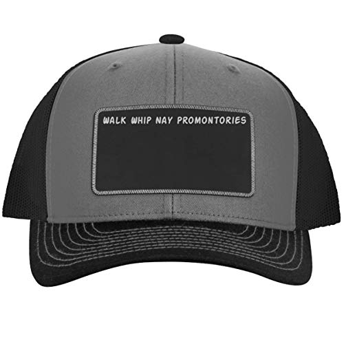 got Promontories? - Leather Black Metallic Patch Engraved Trucker Hat, Grey-Steel, One Size