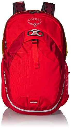 Osprey Packs Radial 26 Daypack, Black, Medium/Large