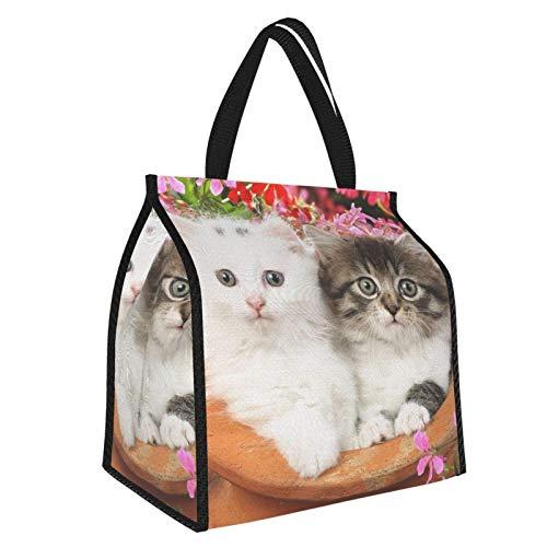 Bolsa de almuerzo con diseño de gatitos para macetas de vapor, con aislamiento térmico, reutilizable, suave, resistente al agua, a prueba de fugas, para trabajo o viajes