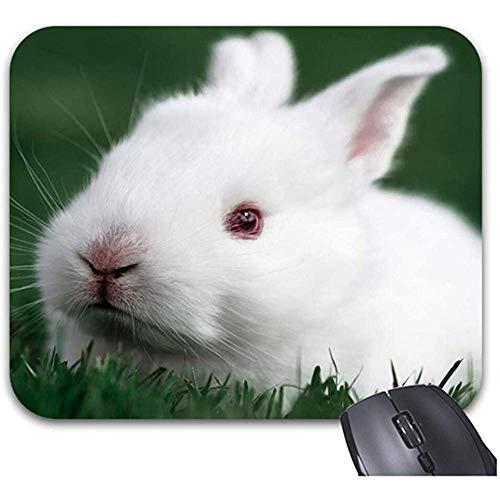 Smity nettes Häschen auf der Gras-Mausunterlage 30 * 25 * 0,3 cm Mauspad Mode entworfene Mousepads Modisches Büro-Tischplattenzubehör