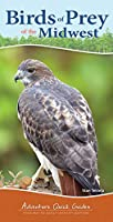 Birds of Prey of the Midwest: Your Way to Easily Identify Raptors (Adventure Quick Guides)