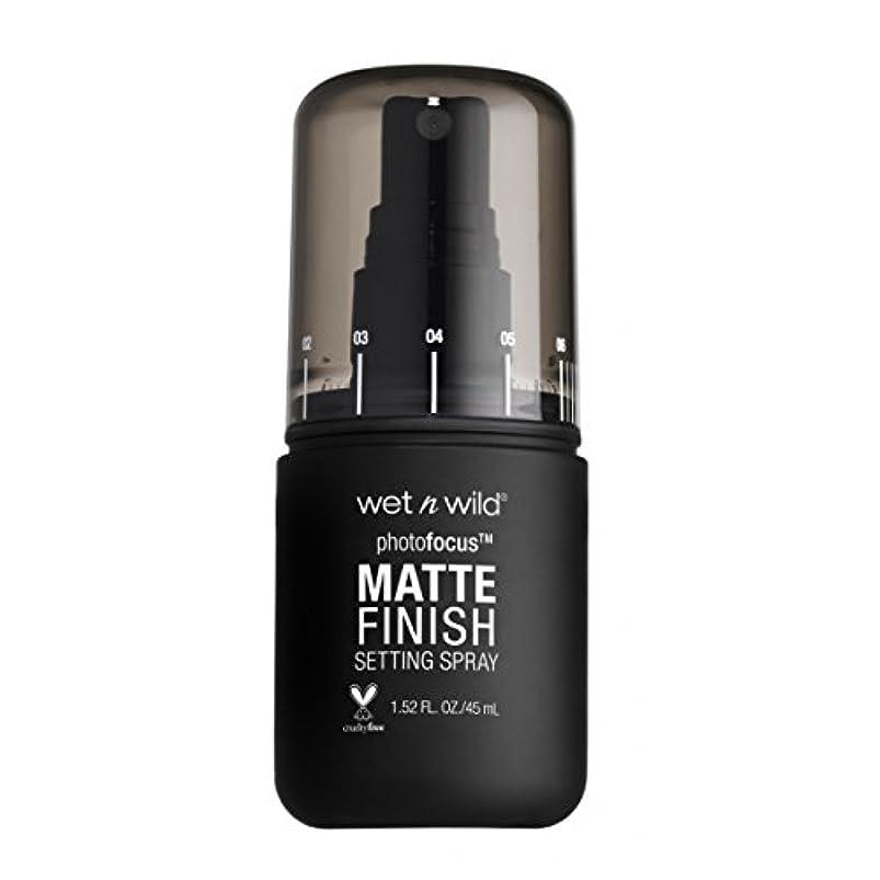 麻酔薬ジャニス私(6 Pack) WET N WILD Photo Focus Matte Finish Setting Spray - Matte Appeal (並行輸入品)
