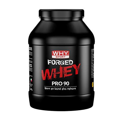 WHY SPORT Forged Whey: Proteine isolate e idrolizzate al 90%, con Forged Blast, inulina e Probiotici Lactobacillus acidophilus. Gusto Cacao. Formato da 900gr. SENZA GLUTINE