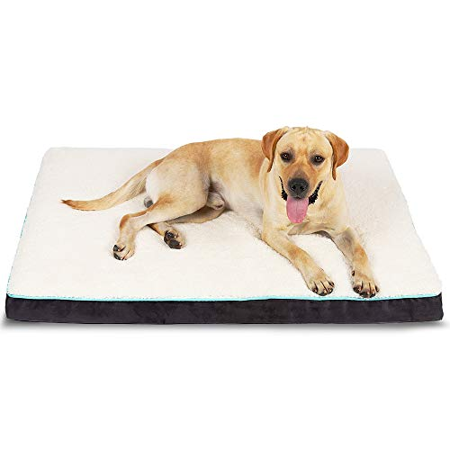 EDUJIN Large Dog Bed for Small, Medium, Large Dogs Up to 50/75/100lbs, Orthopedic Memory Foam Platform Dog Bed
