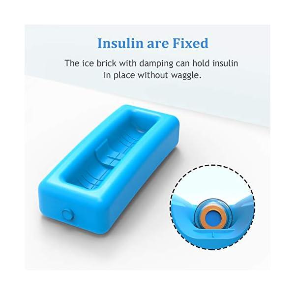 buy  SHBC Medical Cooler Insulin Vial Carrying Travel ... Diabetes Care