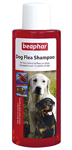 Beaphar Dog Flea Shampoo Red Treatment for Dogs Puppies Killing Fleas 250ml