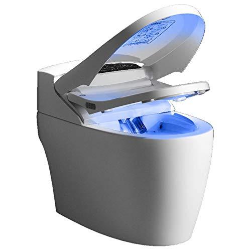 WC japonais monobloc Luxe Platinium 2 Toptoilet