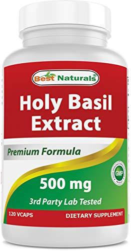 Best Naturals Holy Basil Stress Management 500 mg 120 Veggie Capsules
