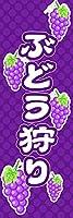 【受注生産】のぼり旗:ぶどう狩り 10ryokou56