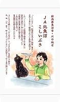 お米の専門店スズノブ千葉店 新潟県 北魚沼産こしいぶき 白米 5kg 令和2年産