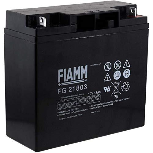 Fiamm Ersatzakku für USV APC Smart-UPS 1500, 12V, Lead-Acid