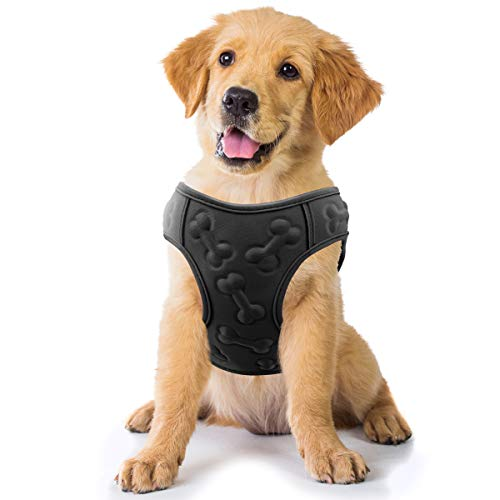 Comfort Fit Metric USA Small Harness
