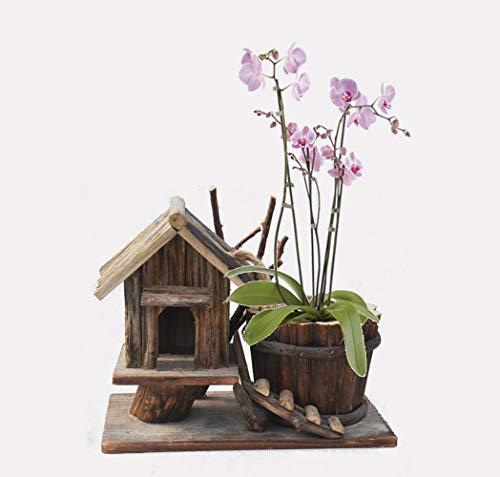YAMEIJIA Hout ambachtelijke huisdecoratie tuinieren decoratie groene plant huisdecoratie houten huis bloempot schilderachtige hout bloempot