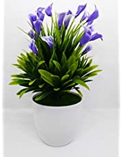 Quick Unbox Artificial Calla Lily Flower Plants with Plastic Pot (Green)
