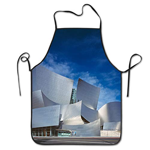 ZYGCMYX Walt Disney Center Concert Hall Hall Architecture Women/Men Kitchen Aprons Bib Save-All Barbecue Cooking Cloth Chef