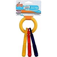 Nylabone Puppy Teething Keys Sm