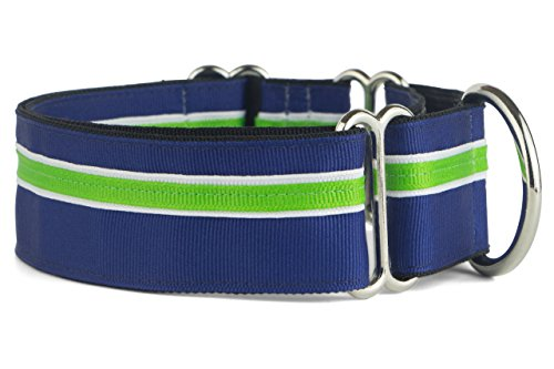 If It Barks - 1.5' Martingale Collar for Dogs - Adjustable - Nylon - Strong and Comfy - Ideal for...