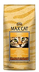 max cat kitten food