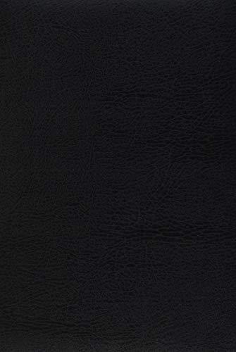 Buchkalender Chef-Timer Balaton schwarz 2020: Terminplaner mit Tageskalendarium. Din A5 Terminkalender 1 Tag 1 Seite. Extra Platz für Notizen.
