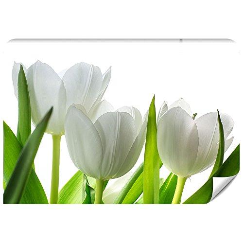 Demur Fototapete Vlies Tulpen - Tapete Tapeten Fototapeten Blumen FDB6 (XS - 220 x 154 cm)