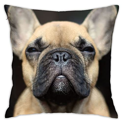 WAZHIJIA French Bulldog Pillowcase Dog Pillow Cover Pillow case for Square Cushion Cover Sofa Bedroom Livingroom Home Decor 18 X 18 Inch
