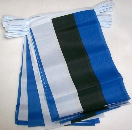 AZ FLAG Guirnalda 6 Metros 20 Banderas de Estonia 21x15cm - Bandera Estonia 15 x 21 cm - BANDERINES
