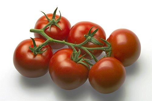 Il vous suffit de graines de l?gumes Bio???Tomate Mecano RZ F1?(72?422)???5?graines???Economy