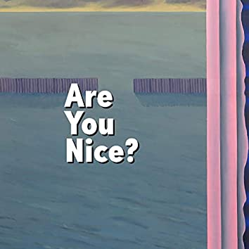 Are You Nice? (feat. Portier)