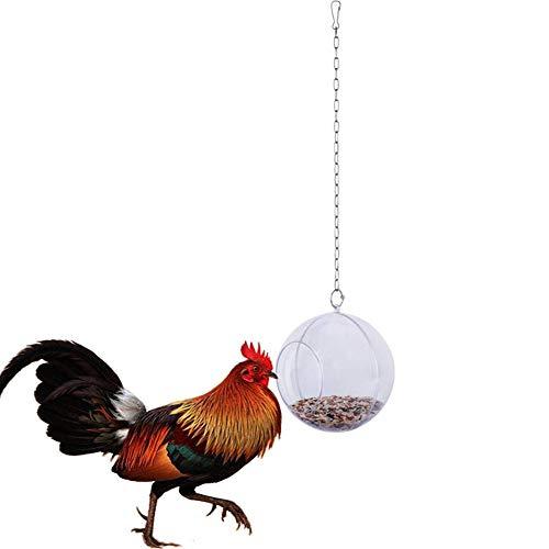 Macabolo Huhn hängen Futter Spielzeug für Hühner Feeder Fütterung behandeln Ball mit Veggie und Samen Futter für Haustier Papagei Vogel