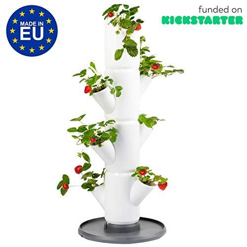 Sissi Strawberry (Starter, weiß) - Pflanzgefäß/Topf/Pflanzturm/Hochbeet für Erdbeeren - für Balkon, Garten und Terrasse - Erdbeeren und Kräuter anpflanzen