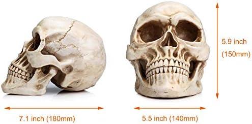 Indiana jones alien skull _image2