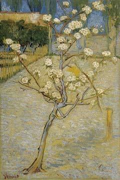 N / A Van Gogh voller Blüte Mandelbaum Ölgemälde Reproduktion auf Leinwand Poster und Drucke Wohnzimmer Wandbild rahmenlose dekorative Malerei A89 70x100cm