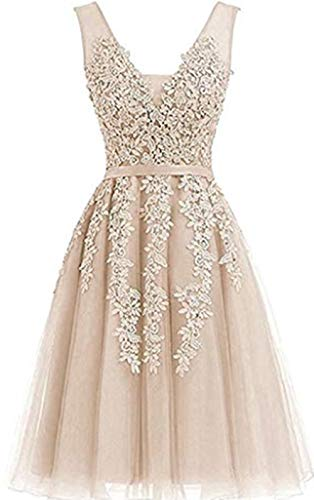 Annadress Women's Sleeveless Homecoming Dresses Short Net Bridesmaid Dresses Appliques Evening Cocktail Gowns (2, Champagne)