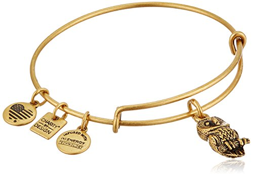 Alex and Ani Ode To The Owl Rafaelian Gold Bangle Bracelet