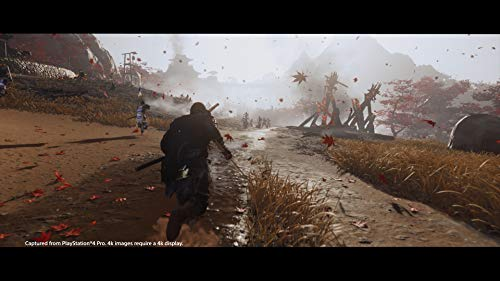 41d2gnBLO3L - Ghost of Tsushima - PlayStation 4