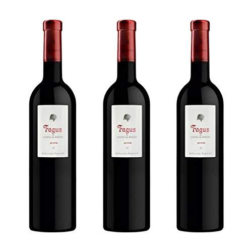 Fagus De Coto De Hayas Vino Tinto - 3 botellas x 750ml - total: 2250 ml