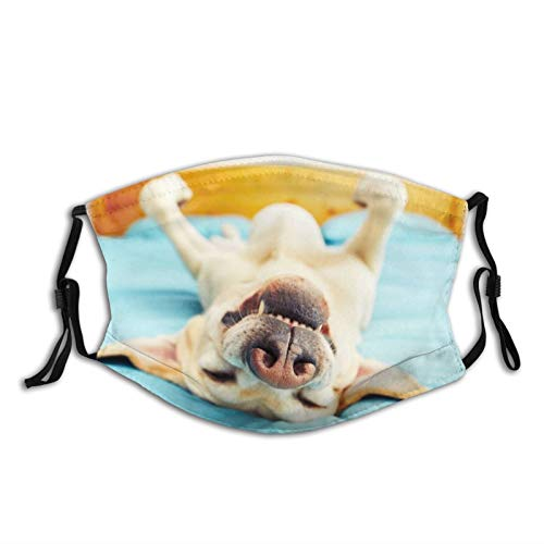 Bulldog Sleeping On The Bed Face Mask With Filter Pocket Washable Reusable Face Bandanas Balaclava With 2 Pcs Filters