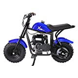 4-Stroke Motorcycle Pocket Bike 40CC Trail Mini Dirt Bike Gas-Power Pit Blue