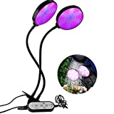 Alitade Grow Light 30W Waterproof Full Spectrum LED Grow Lights for Indoor Plants with Timer 4/8/12H, 5 Dimmable Levels, 3 Switch Modes, Adjustable Gooseneck & Desk Clip On