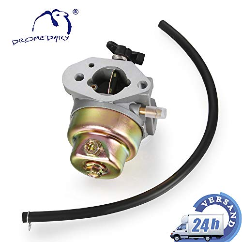 Dromedary 16100-Z0L-013 Vergaser GCV 135 GCV 160 HRB216, HRR216 HRS216 HRT216 HRZ216
