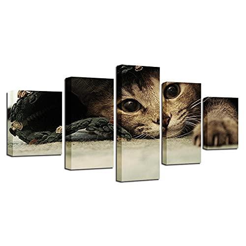 wangdazhuang 5 Lienzos Cuadros Grandes Baratos Animales Lovely Cats - Animal Cartel De La Decoración De Arte De La Sala De Estar con El Marco-150X80Cm