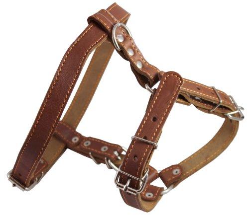 "Genuine Leather Dog Walking Harness Medium Brown, 21"" - 24"" Chest"
