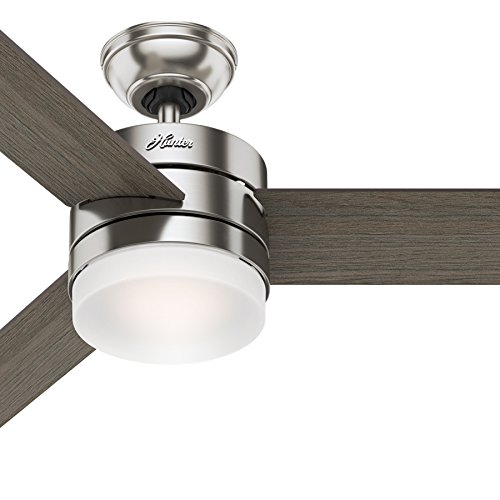 Hunter 54in Contemporary Ceiling Fan with Remote Control in...