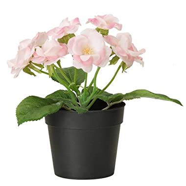 Ikea Fejka Artificial Potted Plant Small Pink Rose Plant 7  Tall 3 1/2 Pot Diameter