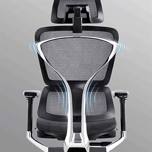 The Best High End Ergonomic Chairs for Bad Backs