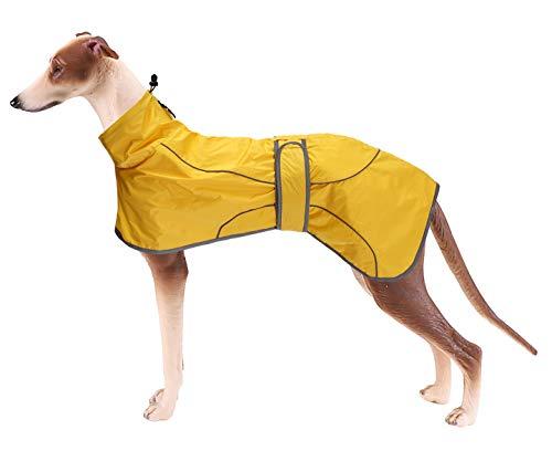 Geyecete - Chubasquero ligero ajustable con correas reflectantes y agujero para arnés con bandas ajustables, galgo, color amarillo y XS