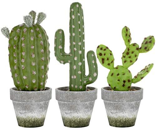 3 Plantas Suculentas Artificiales Grandes Cactus en Macetas de Papel de Pulpa para Decoración del Hogar – H26,5cm – Interior y Exterior – Sala de Estar Cocina Baño Oficina Escritorio Dormitorio Regalo