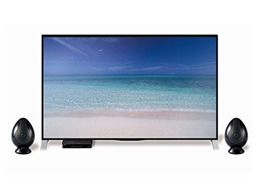 OlasonicTV用スピーカー(ノーブルブラック)TW-D9HDM